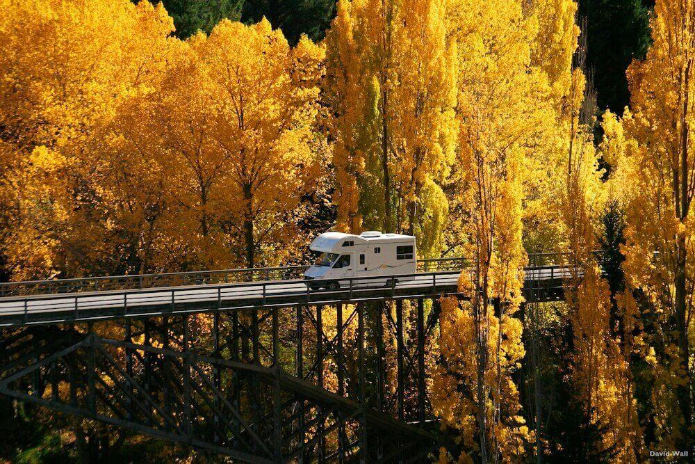 الخريف في نيوزيلندا. صورة من منطقة أوتاجو في الجزيرة الجنوبية
