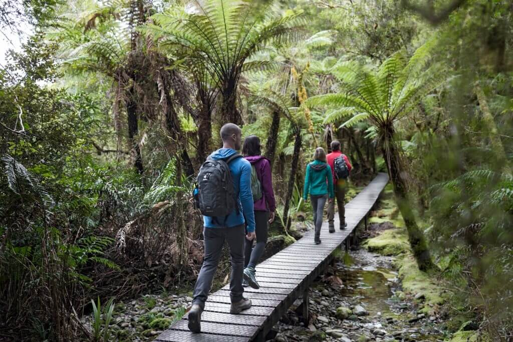 تراكات المشي و الـhiking لا تنتهي في الساحل الغربي للجزيرة الحنوبية